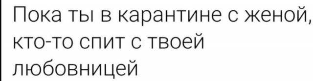 191521_2_trinixy_ru.jpg