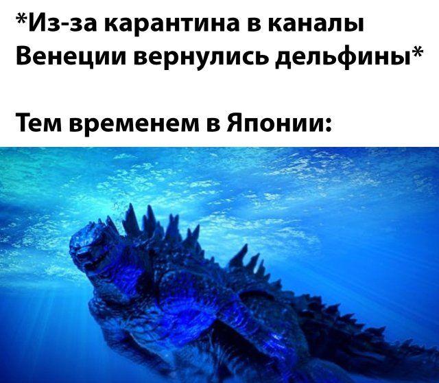 1586211805_podborka-5.jpg