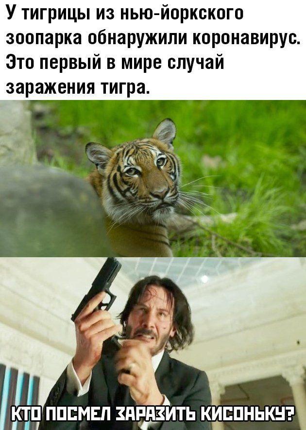 1586211749_podborka-17.jpg