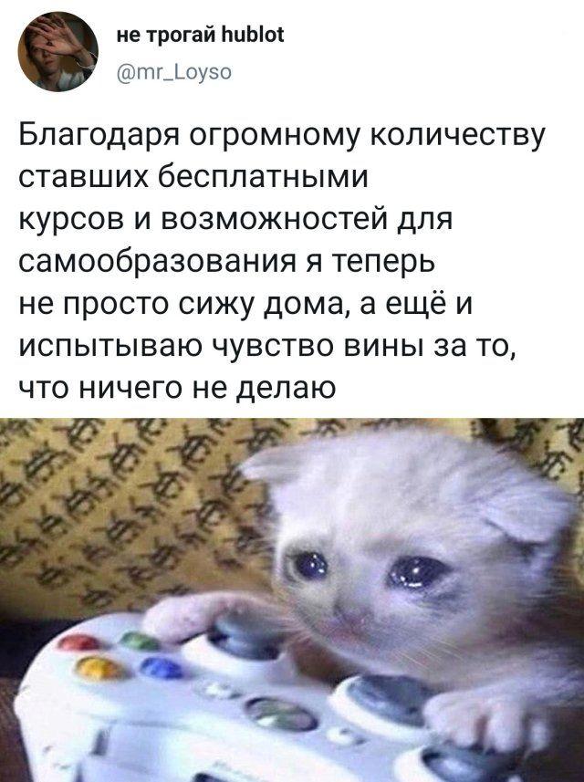 1586299552_prikol-3.jpg