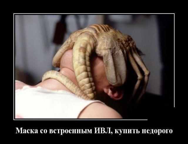 1586497640_0019.jpg