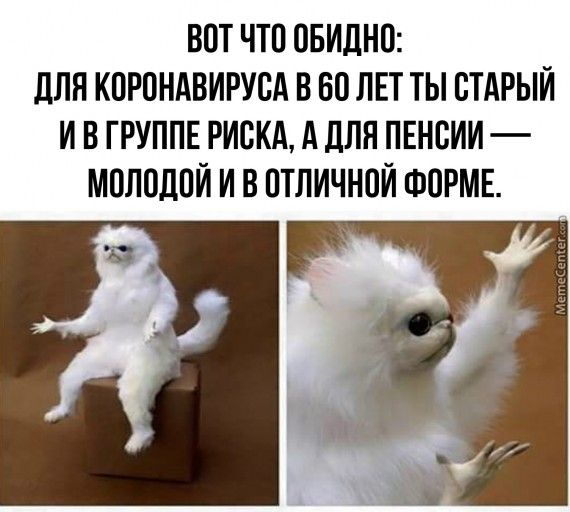 1586542816_zl9x7md9yvo.jpg