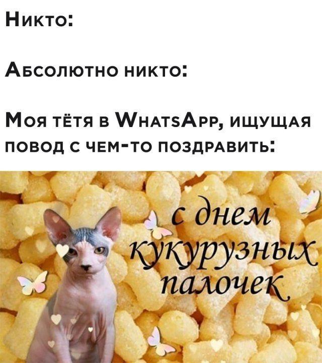 Фотоприколы для отличного настроения Приколы,myprikol,com