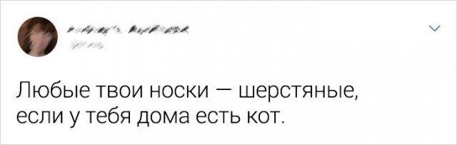 myshlenie-nestandartnoe-tvity-citaty-vkontakte-vkontakte-smeshnye-statusy