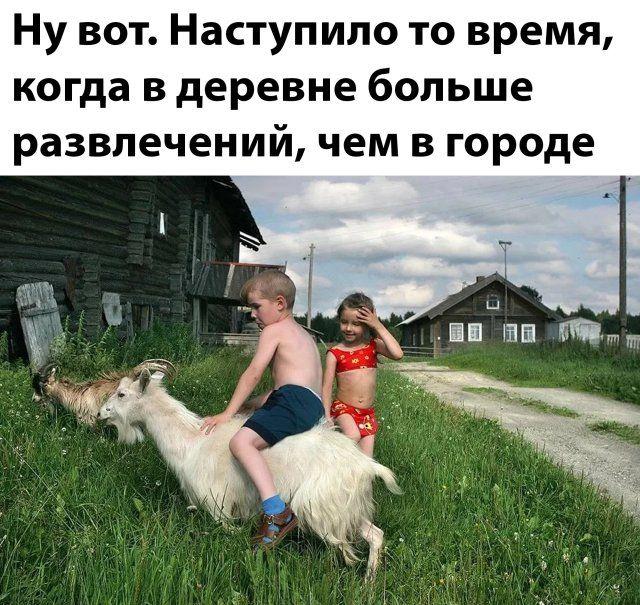 1586915138_kartinka-19.jpg