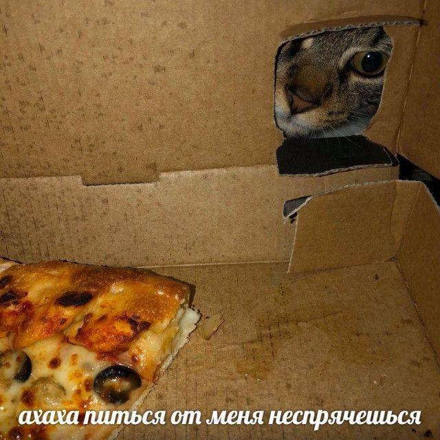1586915105_kartinka-24.jpg