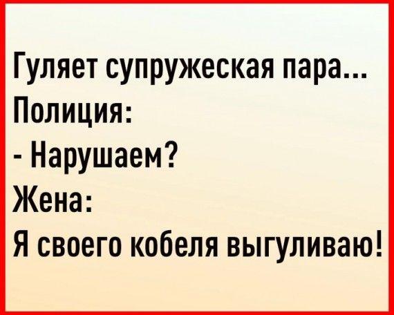 1586874848_152467559_3416556_j1cioeppv9e.jpg