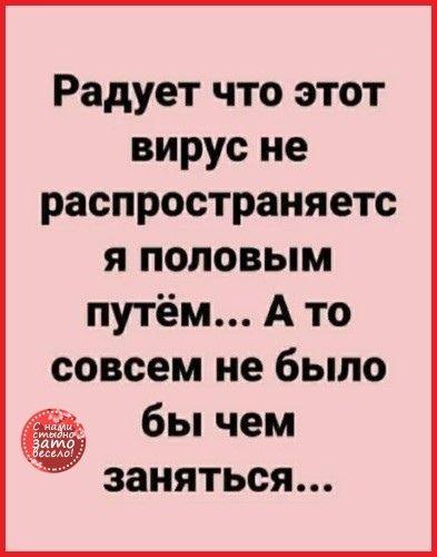 1586875135_152467655_3416556_5dt0qgdpza.jpg