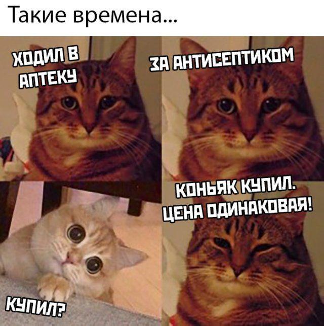 1587051681_kartinki-2.jpg
