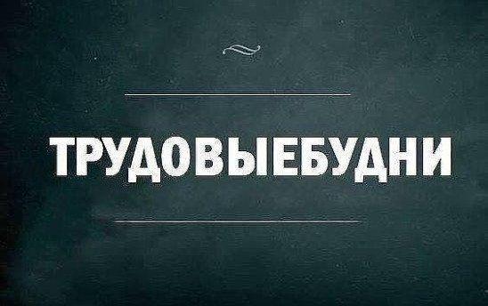 Игра слов и всякие каламбуры Приколы,myprikol,com,игра