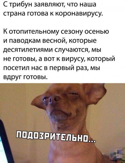 1587137752_1587111040_podb_31.jpg