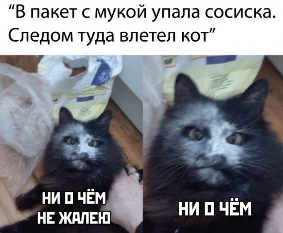 1587137679_1587110964_podb_25.jpg