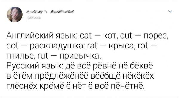 yazyk-russkiy-tvitov-citaty-vkontakte-vkontakte-smeshnye-statusy