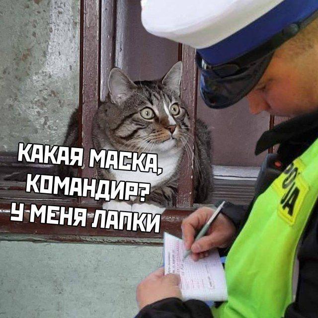 1587409179_kartinki-4.jpg