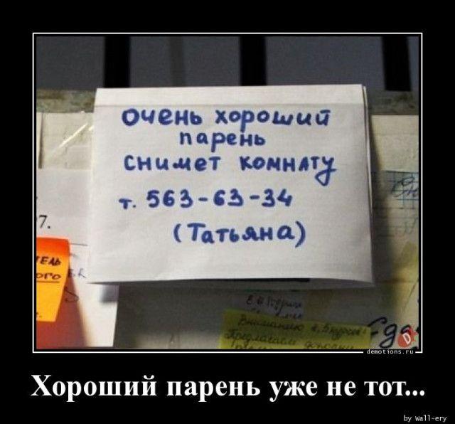 1587452377_demki-13.jpg