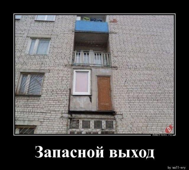 1587452356_demki-11.jpg