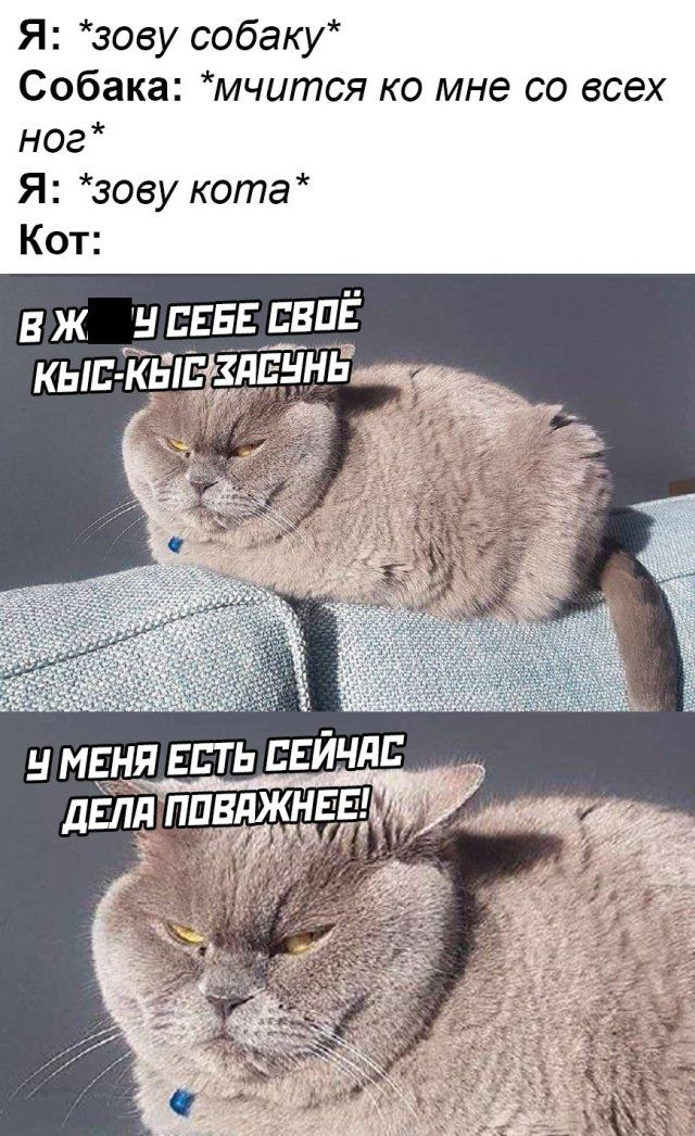 1587721982_podb_35.jpg