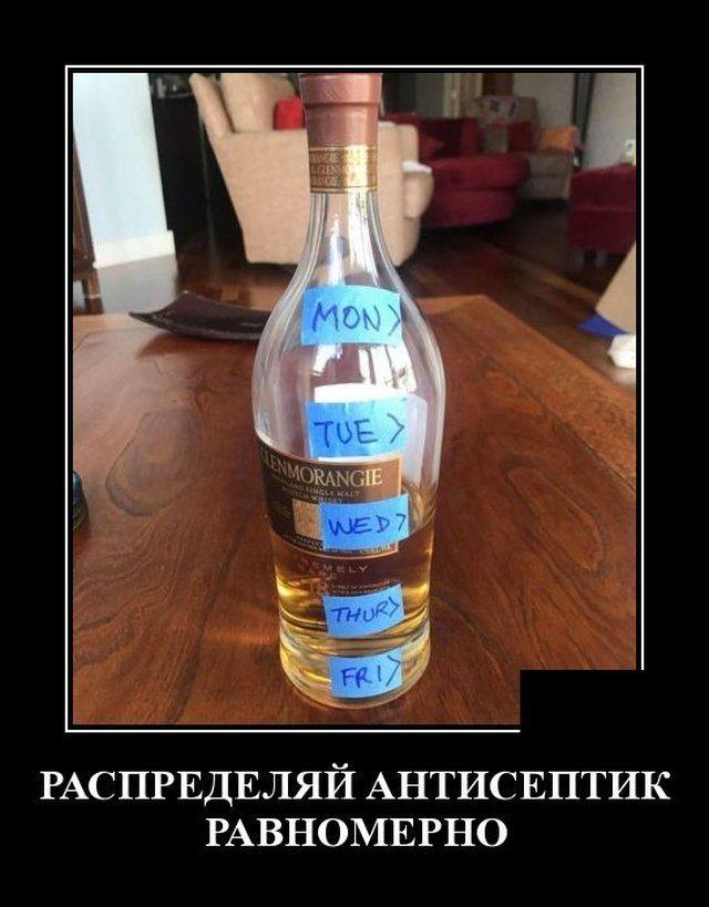 1587666559_0019.jpg