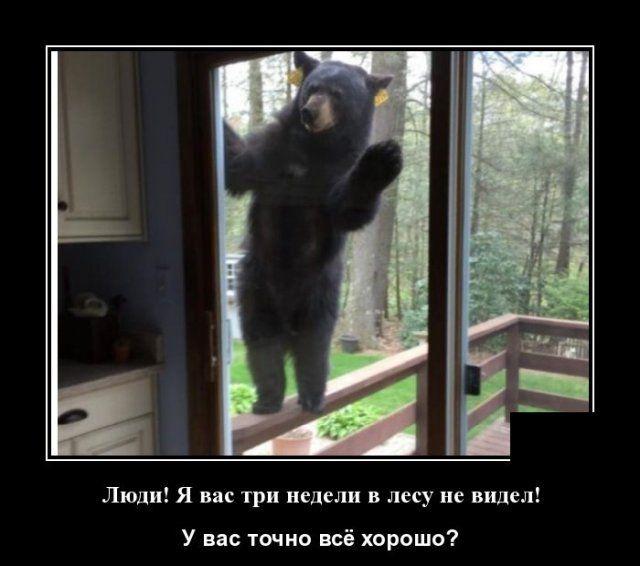 Демотиваторы от 26.04 │ фото Приколы,ekabu,ru,необычное,фото
