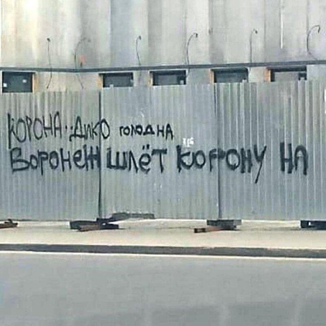 samoizolyacii-rezhima-period-citaty-vkontakte-vkontakte-smeshnye-statusy