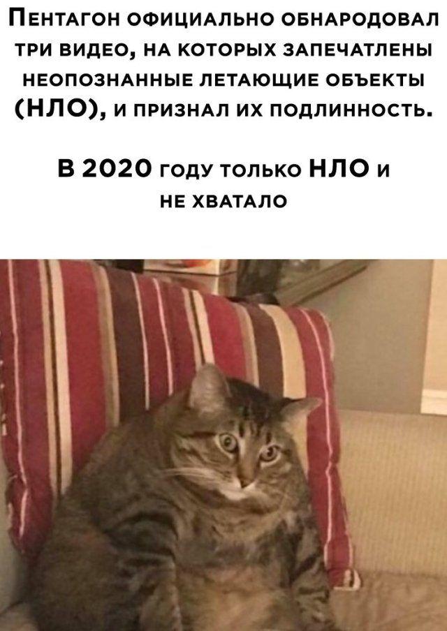 1588119314_foto-19.jpg