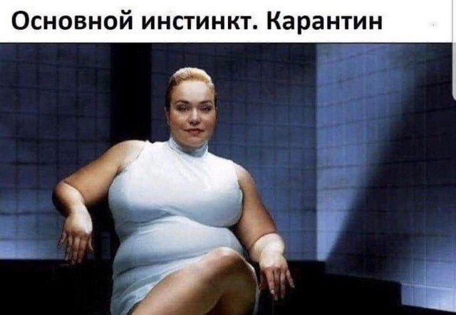 seti-polzovateley-volnuet-citaty-vkontakte-vkontakte-smeshnye-statusy