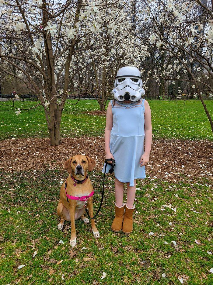 девочка в шлеме держит собаку на поводке