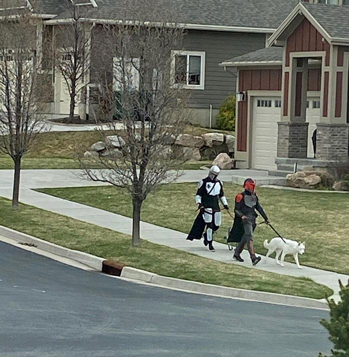 мужчины в костюмах рыцарей выгуливают собак