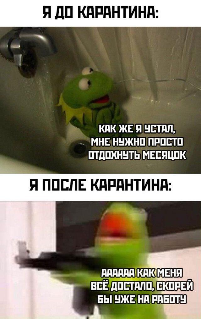 1588435642_prikol-8.jpg