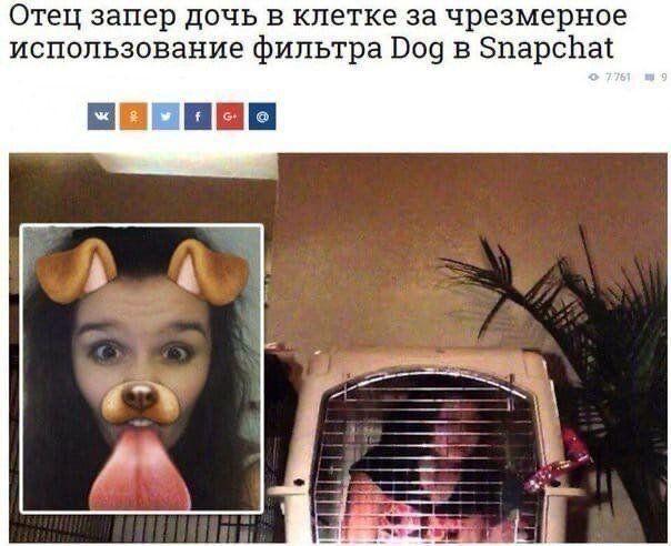 roditeley-strannyh-yazhmaterey-citaty-vkontakte-vkontakte-smeshnye-statusy