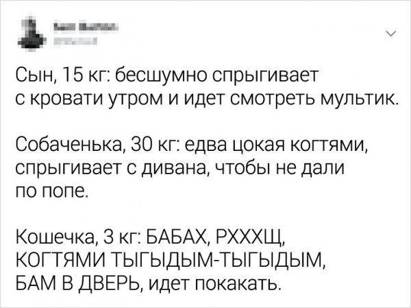 tvitov-zabavnyh-podborka-citaty-vkontakte-vkontakte-smeshnye-statusy