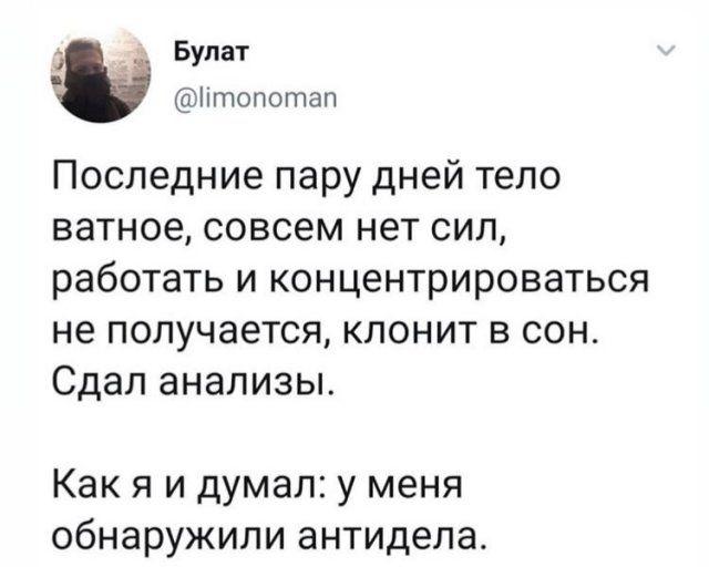193552_8_trinixy_ru.jpg