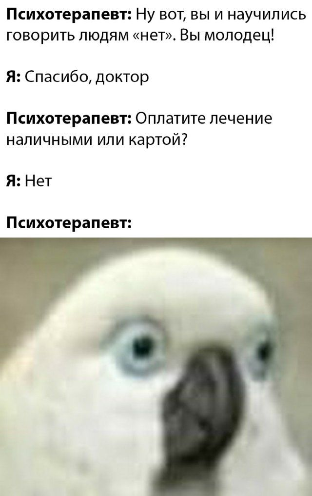 Порция приколов! Приколы,myprikol,com,прикол