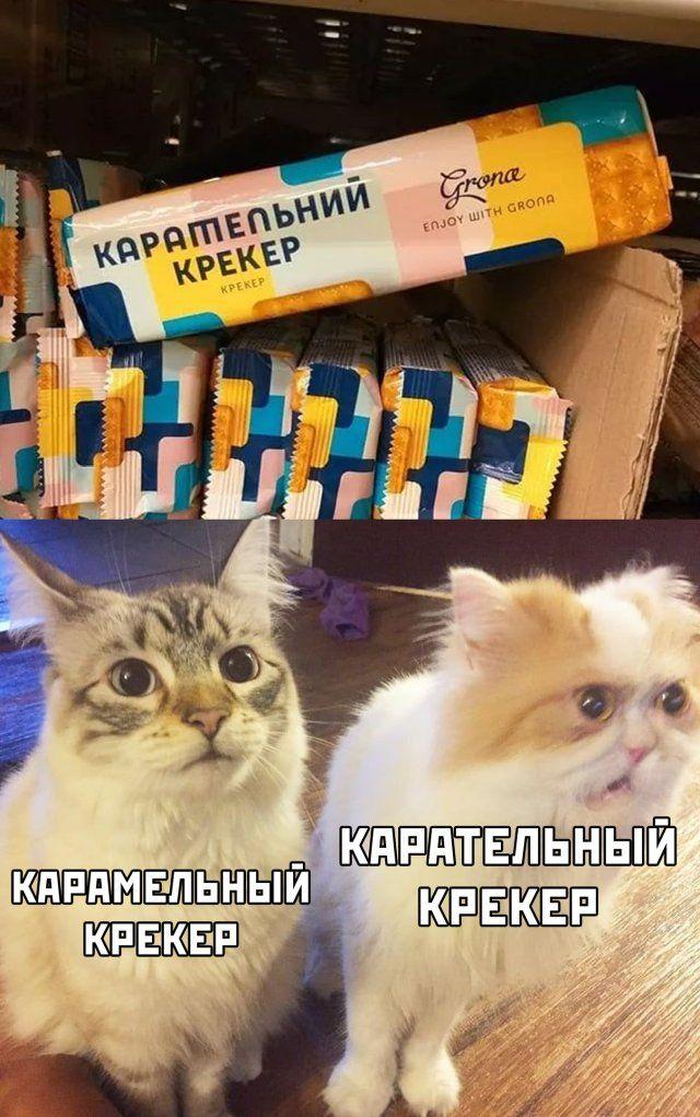1589407366_kartinki-3.jpg