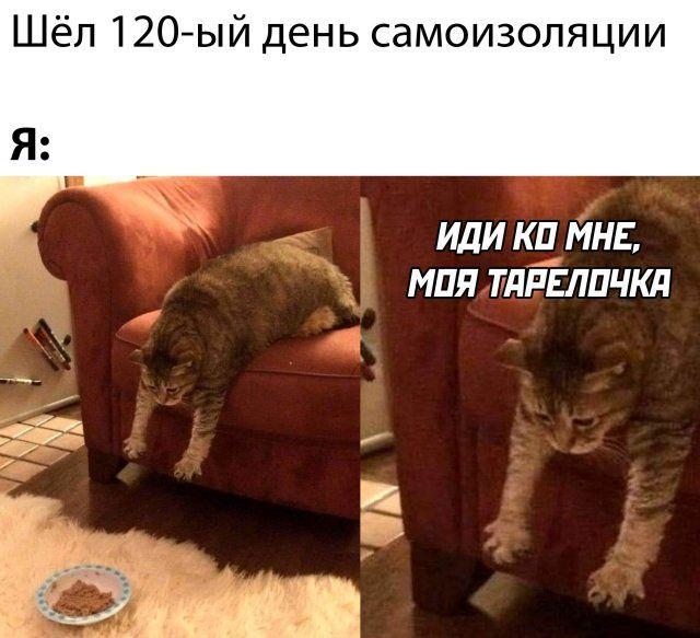 1589407392_kartinki-6.jpg