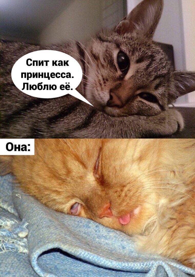 z-humxop1tw.jpg