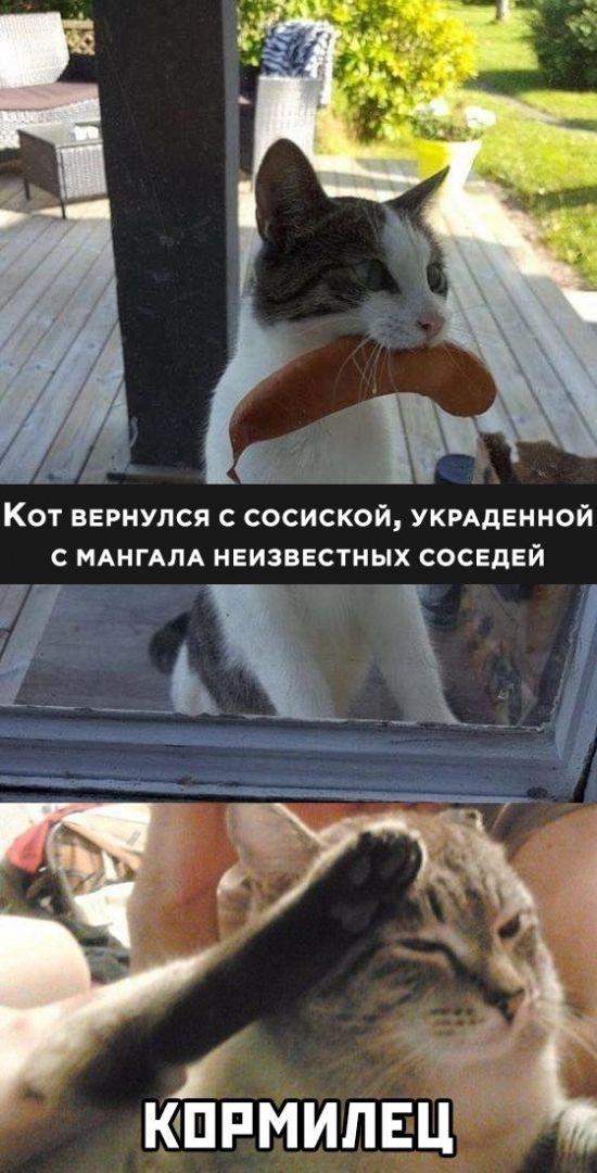 1589639337_kartinki-18.jpg