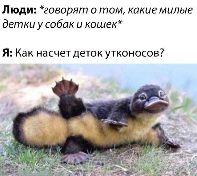 181408_94032.jpg