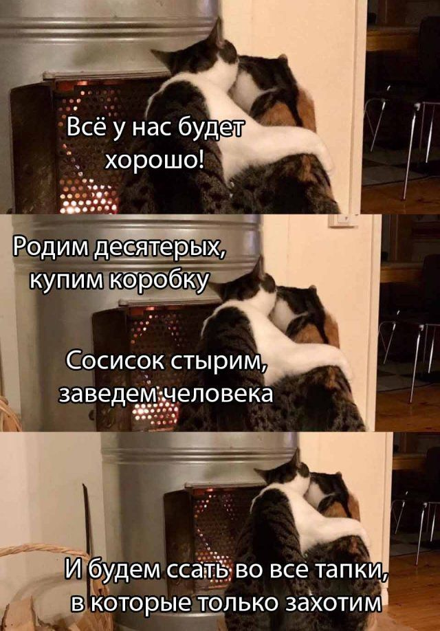 1589879538_lol-28.jpg