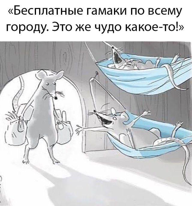 1589879607_lol-20.jpg