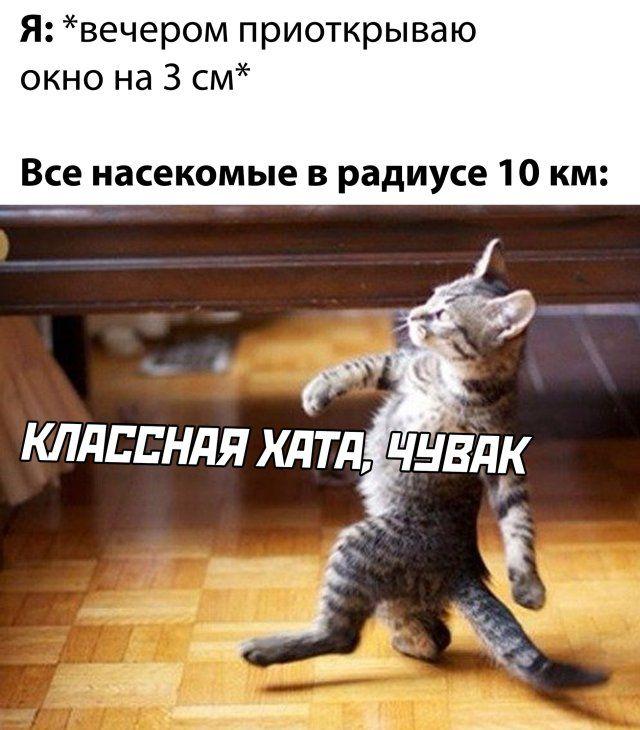 1589879588_lol-1.jpg