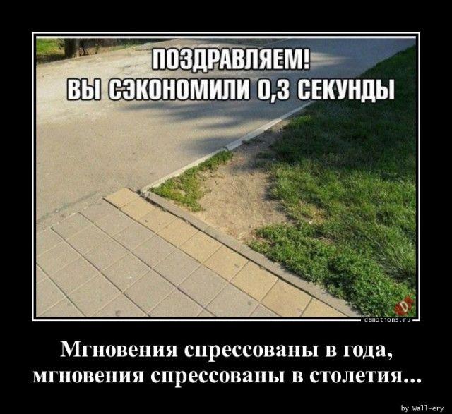 1589958704_demki-17.jpg