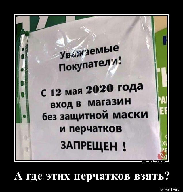 1589958788_demki-9.jpg