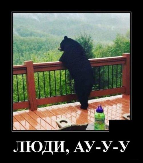 1590607324_330757_1153203.jpg