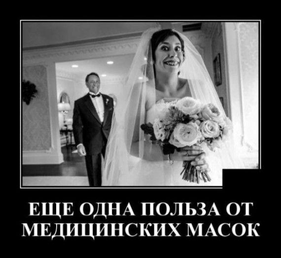 1590607608_330757_1153185.jpg