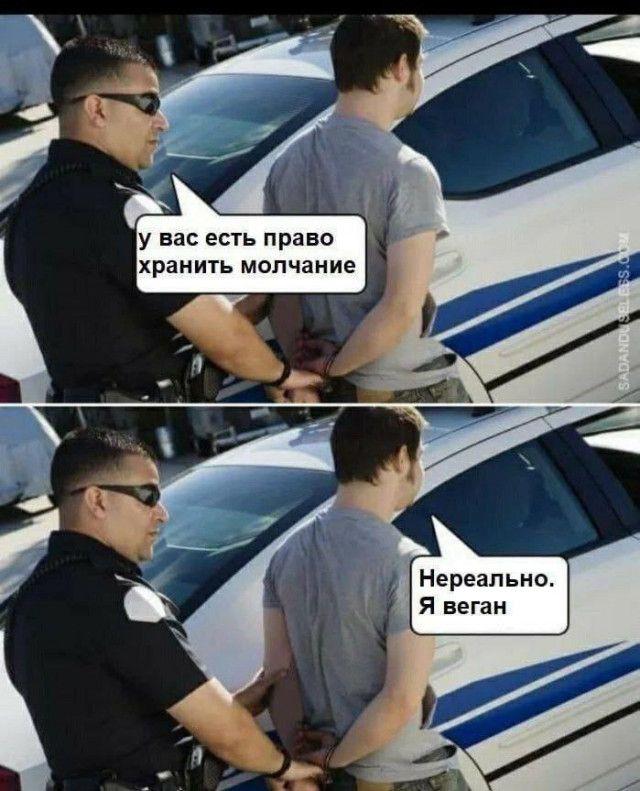 1590920635_prikol-21.jpg