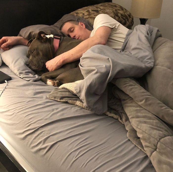 собака и парень спят в обнимку