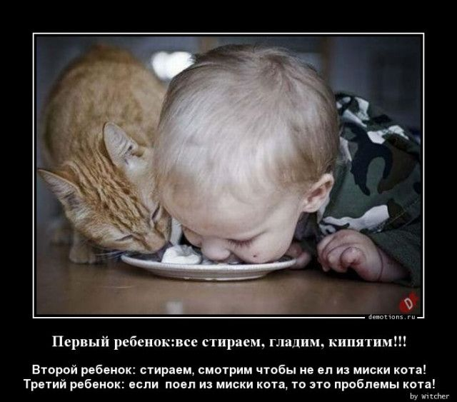 1590994714_demy-20.jpg