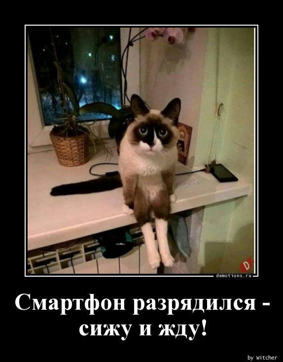 1590994784_demy-28.jpg