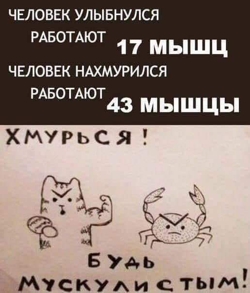1591311941_podborka-34.jpg